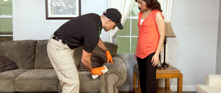 Red Bank, NJ carpet upholstery cleaning